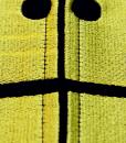 Hood Close Up